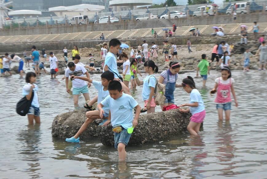 青岛海边夏令营图片